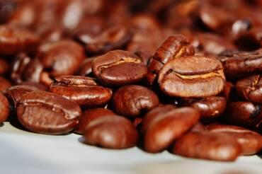Productores de Café logran concretar negocios con Bélgica