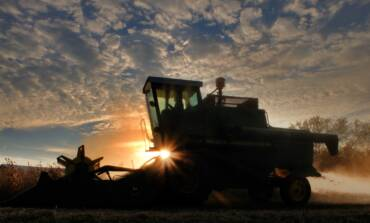 CIENCIA E INNOVACIÓN, HERRAMIENTAS CLAVE PARA FORTALECER LA AGRICULTURA