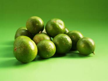 Jugo de limón deshidratado hecho en Jalisco para el mundo